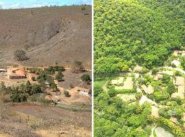 Un-cuplu-a-creat-o-padure-plantand-2-milioane-de-copaci-in-20-de-ani