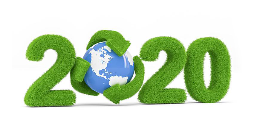 Lectii-in-2019-si-planuri-pentru-2020